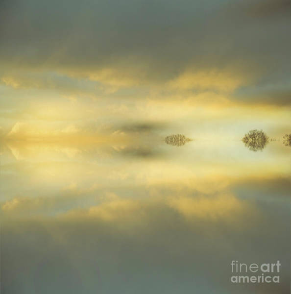 Photograph - Calming by Alana Ranney
