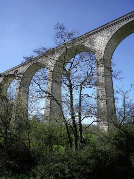 Wall Art - Photograph - Calstock Viaduct Arches Through Trees Devon And Cornwall Border by Richard Brookes