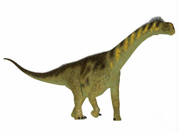 Colorado Wildlife Digital Art - Camarasaurus Dinosaur Side Profile by Corey Ford