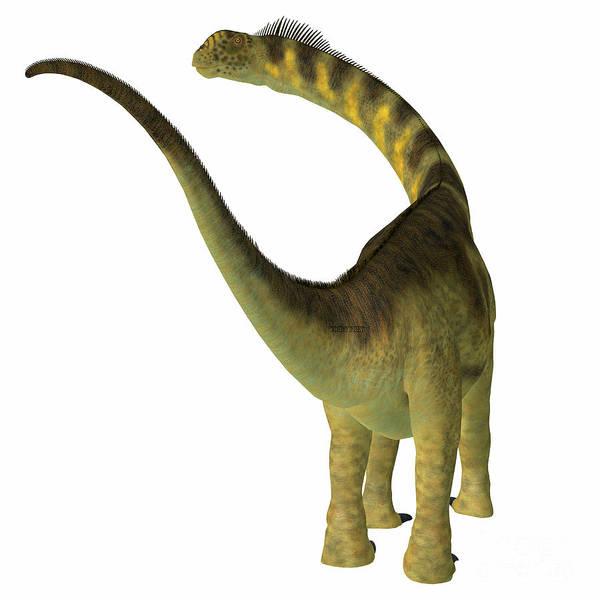Colorado Wildlife Digital Art - Camarasaurus Dinosaur Tail by Corey Ford