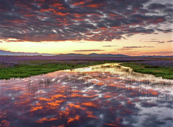 Photograph - Camas Spring Sunrise by Leland D Howard