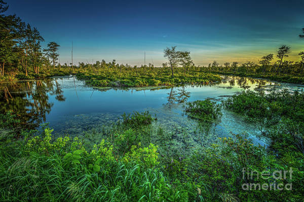 Photograph - Camden Lake Outlet by Roger Monahan