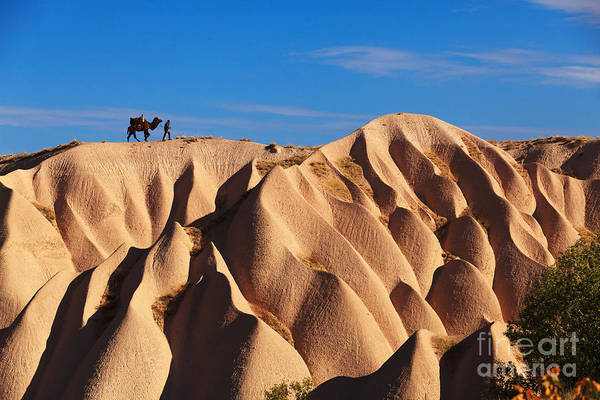 Wall Art - Photograph - Camel And The Cameleer On The Rock And by Yavuz Sariyildiz