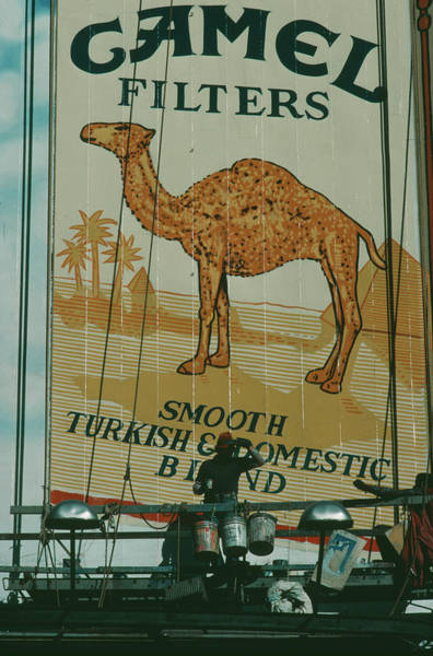 Photograph - Camel Filters by Alfred Gescheidt