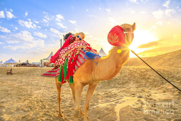 Photograph - Camel Ride With Woman by Benny Marty