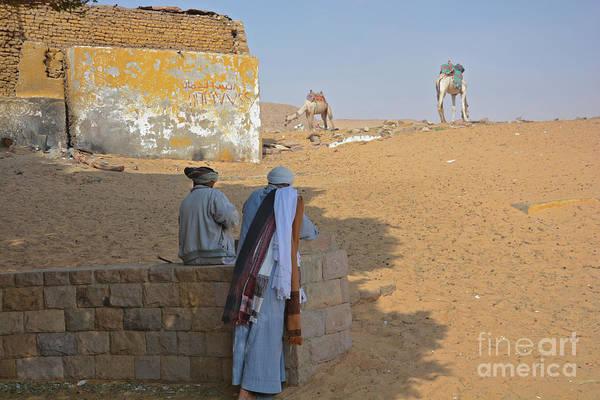 Wall Art - Photograph - Camel Watch by Andrea Simon