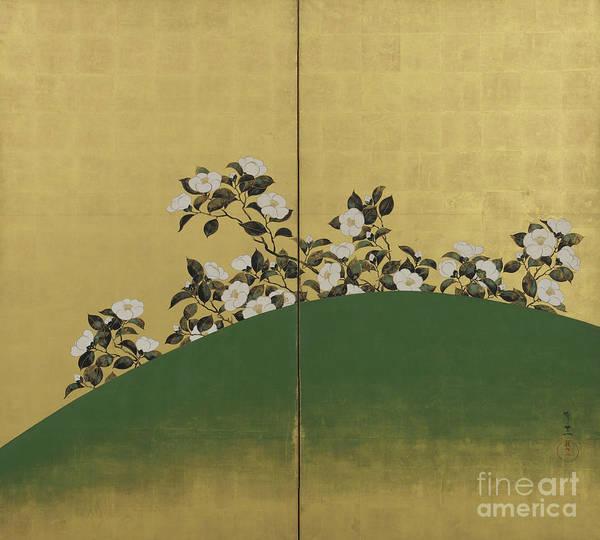 Wall Art - Painting - Camelias, Edo Period by Suzuki Kiitsu