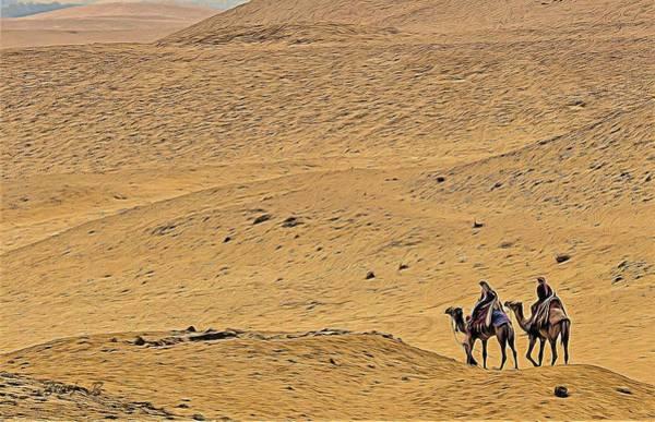 Wall Art - Photograph - Camels In The Desert by Bearj B Photo Art