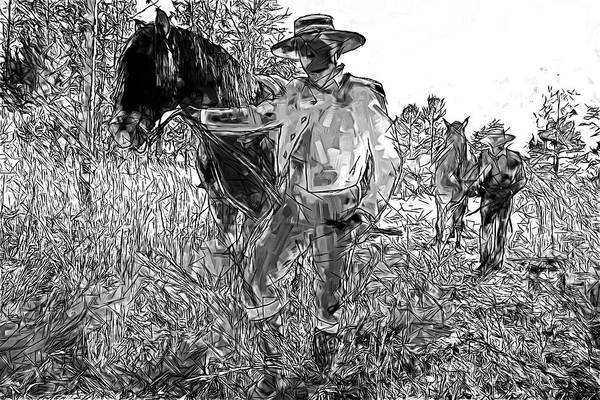 Photograph - Camina Vaqueros by Alice Gipson
