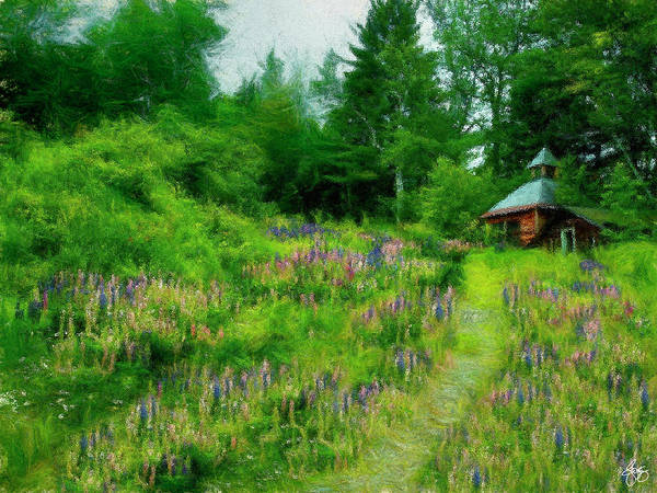 Photograph - Camp In The Lupine by Wayne King