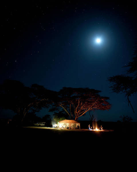 Mike D Photograph - Camping Under Fever Tree And Full Moon by Mike D. Kock