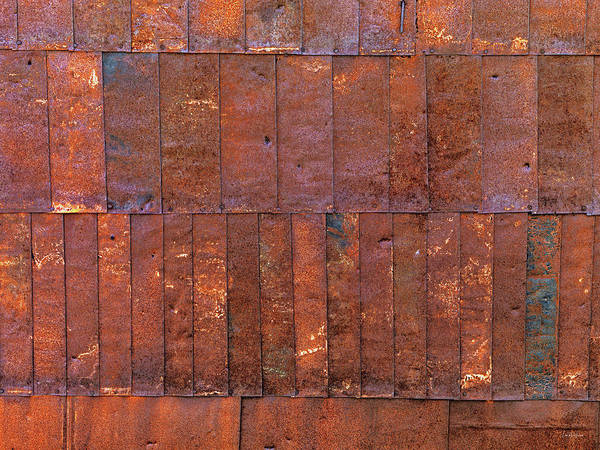 Photograph - Can Wall 2 by Leland D Howard