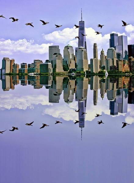 Wall Art - Photograph - Canada Geese Flight Over The Hudson by Geraldine Scull