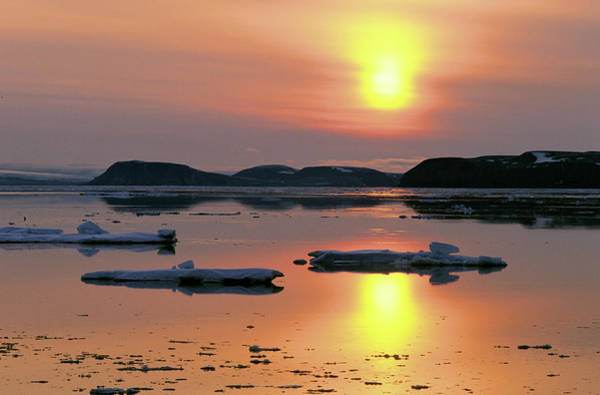 Wall Art - Photograph - Canada, Nunavut, Arctic Midnight Sun by Renault Philippe / Hemis.fr