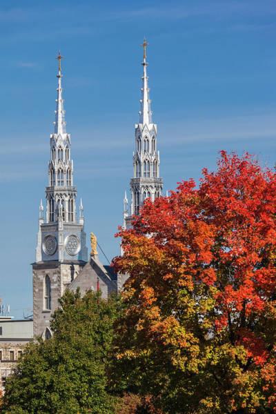 Wall Art - Photograph - Canada, Ontario, Ottawa, Basilica by Walter Bibikow