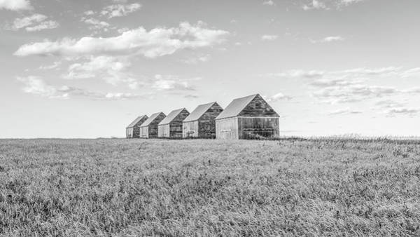 Photograph - Canadian Prairies by Hamish Mitchell