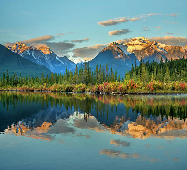 Photograph - Canadian Rockies From Vermilion Lakes by