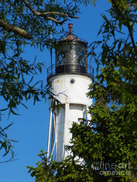Wall Art - Photograph - Canal Lighthouse by Snapshot Studio