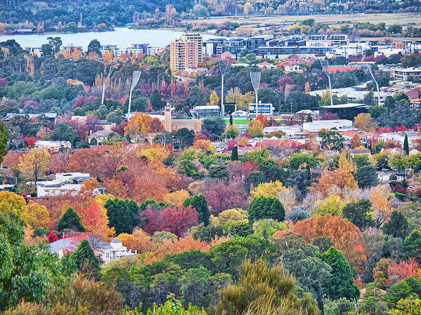 Photograph - Canberra Autumn - Act - Australia by Steven Ralser