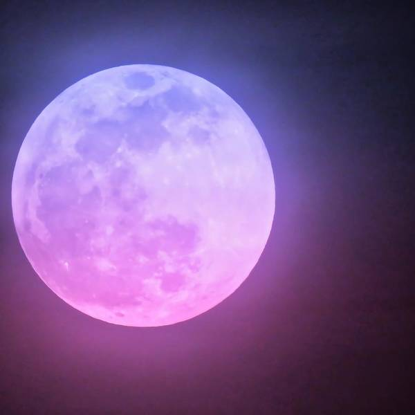 Photograph - Cancer Super Wolf Blood Moon Near Eclipse by Judy Kennedy