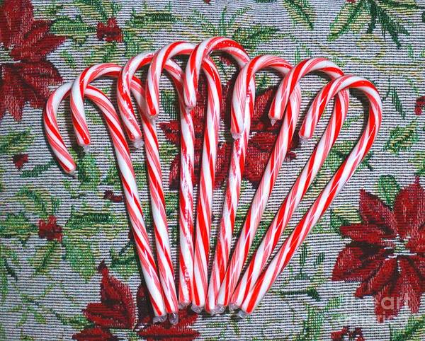Photograph - Candy Cane And Poinsettia  by Christopher Shellhammer