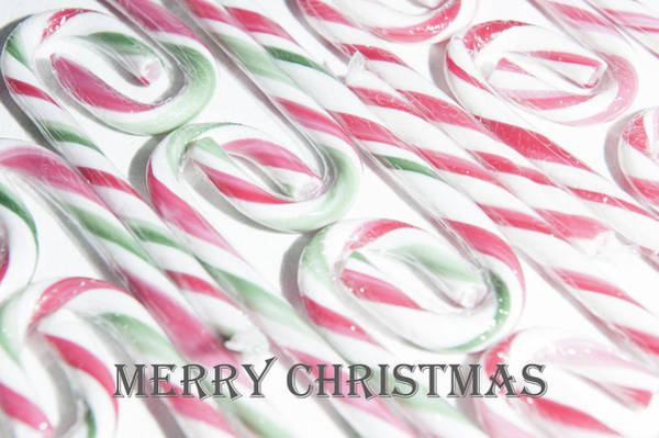 Photograph - Candy Cane Swirls - Merry Christmas by Helen Northcott