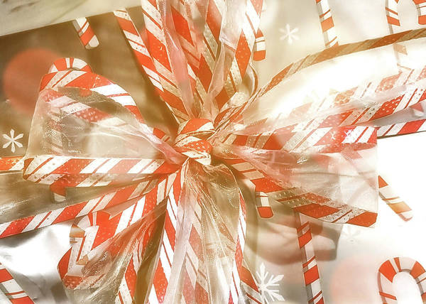 Photograph - Candy Canes by JAMART Photography