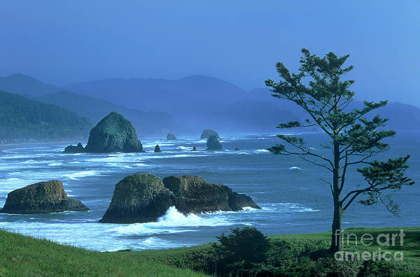 Photograph - Cannon Beach And Haystack Rock Ecola State Beach Oregon by Dave Welling