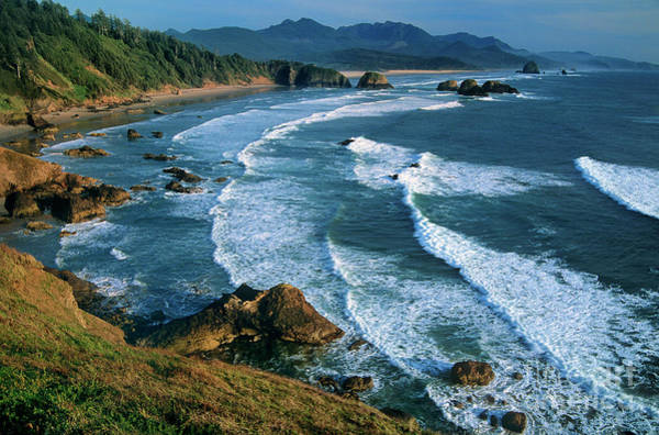 Photograph - Cannon Beach From Ecola State Beach Overlook Oregon by Dave Welling