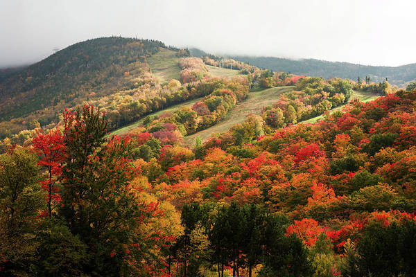 Photograph - Cannon Mountain Fall Foliage by Jeff Folger
