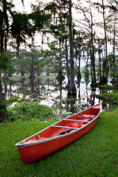 Bald Cypress Wall Art - Photograph - Canoe In Forest, Caddo Lake, Texas, Usa by Danita Delimont