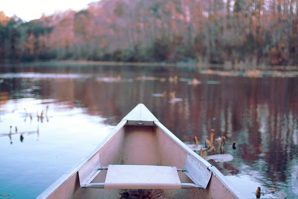 Canoe Photograph - Canoe In Pond by Photography By Alexis Mire