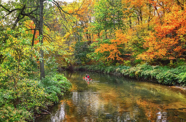 Photograph - Canoeing by Shannon Kelly