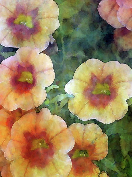 Photograph - Cantaloupe Petunias 6544 Idp_2 by Steven Ward