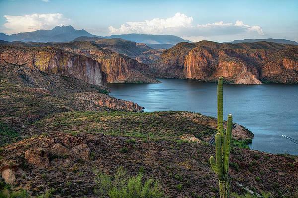 Wall Art - Photograph - Canyon Lake Four Peaks Saguaro Overlook by Dave Dilli