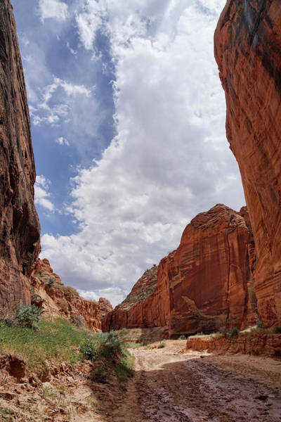 Photograph - Canyon Skies by Leda Robertson