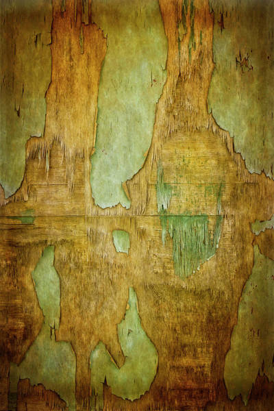 Digital Art - Canyonlands by Becky Titus