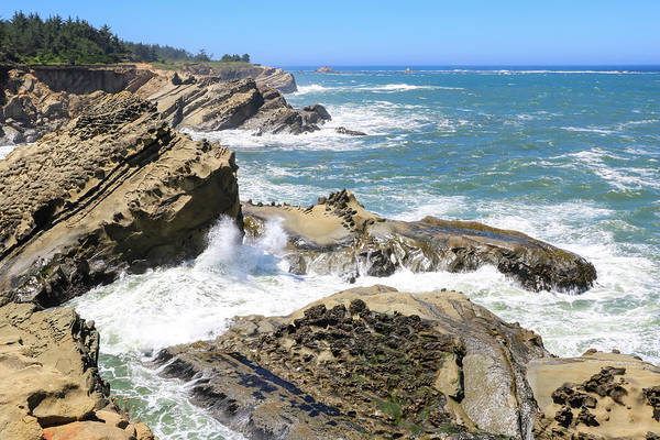Photograph - Cape Arago Coast 1 by Dawn Richards