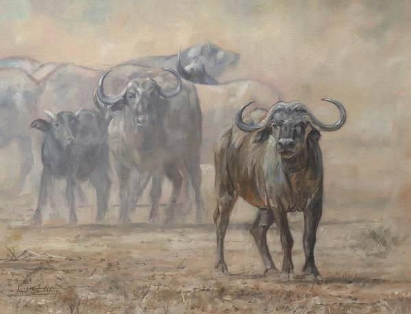 Painting - Cape Buffalo, Zambia by David Stribbling