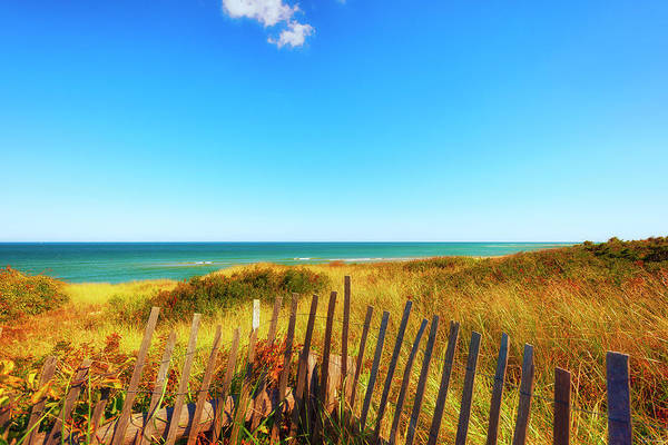 Photograph - Cape Cod Seashore  by Dee Browning