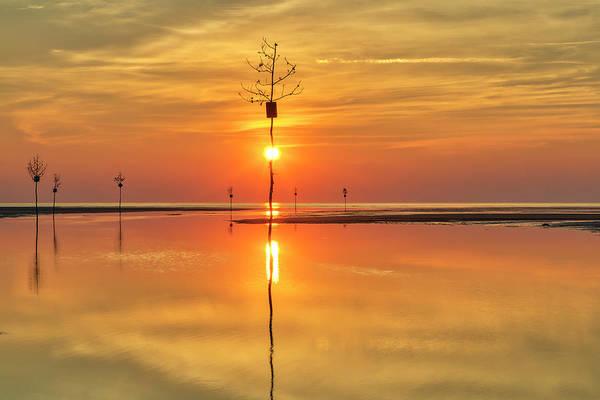 Photograph - Cape Cod Sunburst by Juergen Roth