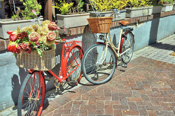 Photograph - Cape Cycles by JAMART Photography
