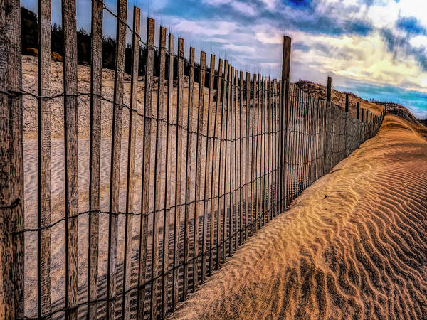 Photograph - Cape Henlopen by Paul Wear