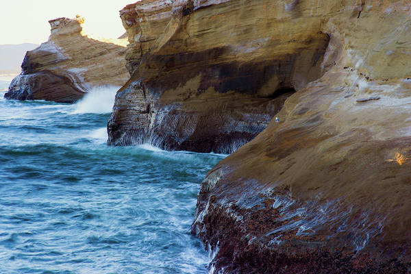 Photograph - Cape Kiwanda Sandstone 072019 by Rospotte Photography
