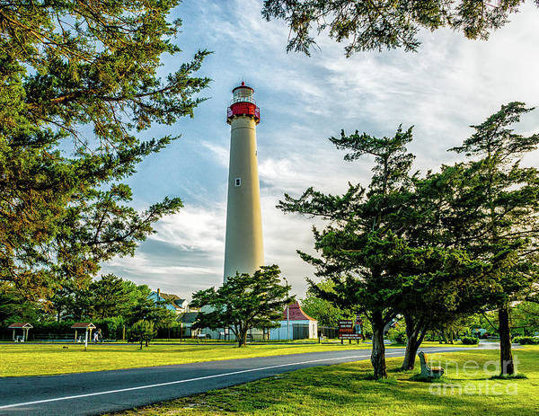 Photograph - Cape May Lghthouse 2019-1 by Nick Zelinsky