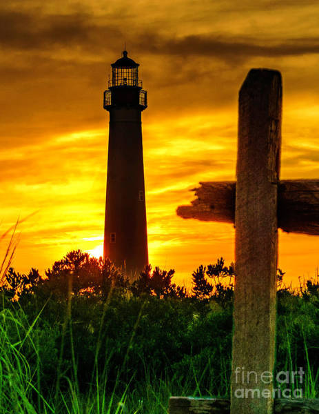 Photograph - Cape May Light 2019-5 by Nick Zelinsky
