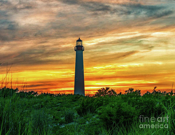 Photograph - Cape May Lighthouse 2019-6 by Nick Zelinsky
