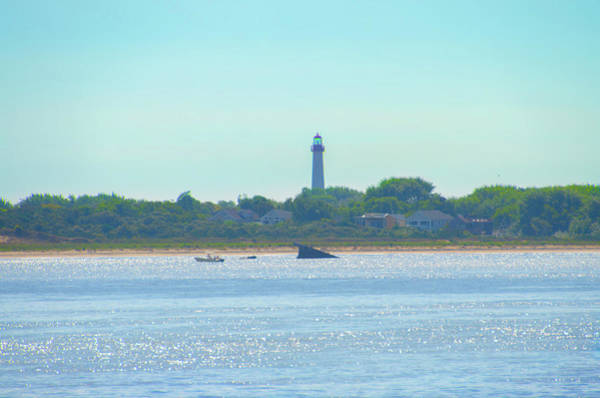 Wall Art - Photograph - Cape May Lighthouse And Atlantus Shipwreck by Bill Cannon