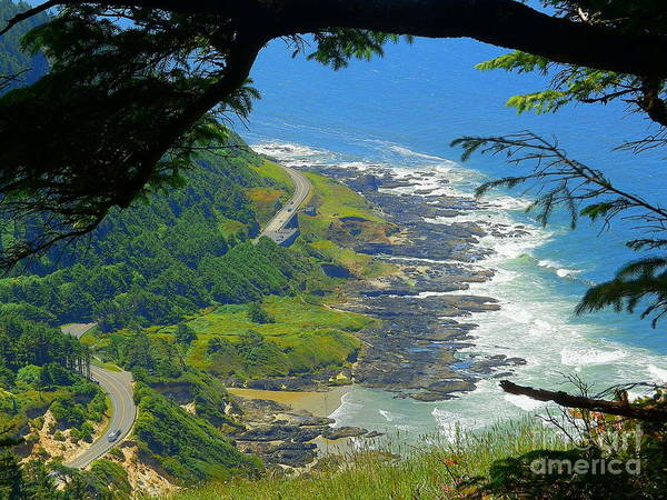 Wall Art - Photograph - Cape Perpetua Nature's Picture Frame by Art Sandi