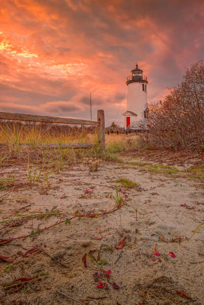 Photograph - Cape Poge Light In December by Thomas Gaitley